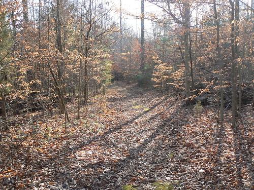 Appomattox - Nature Trail