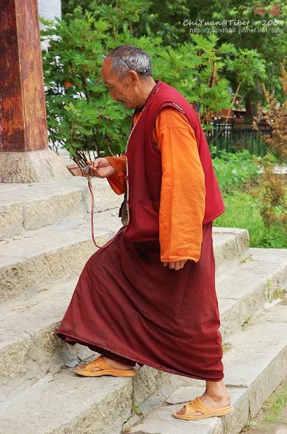 西藏林芝布久喇嘛嶺寺07.jpg