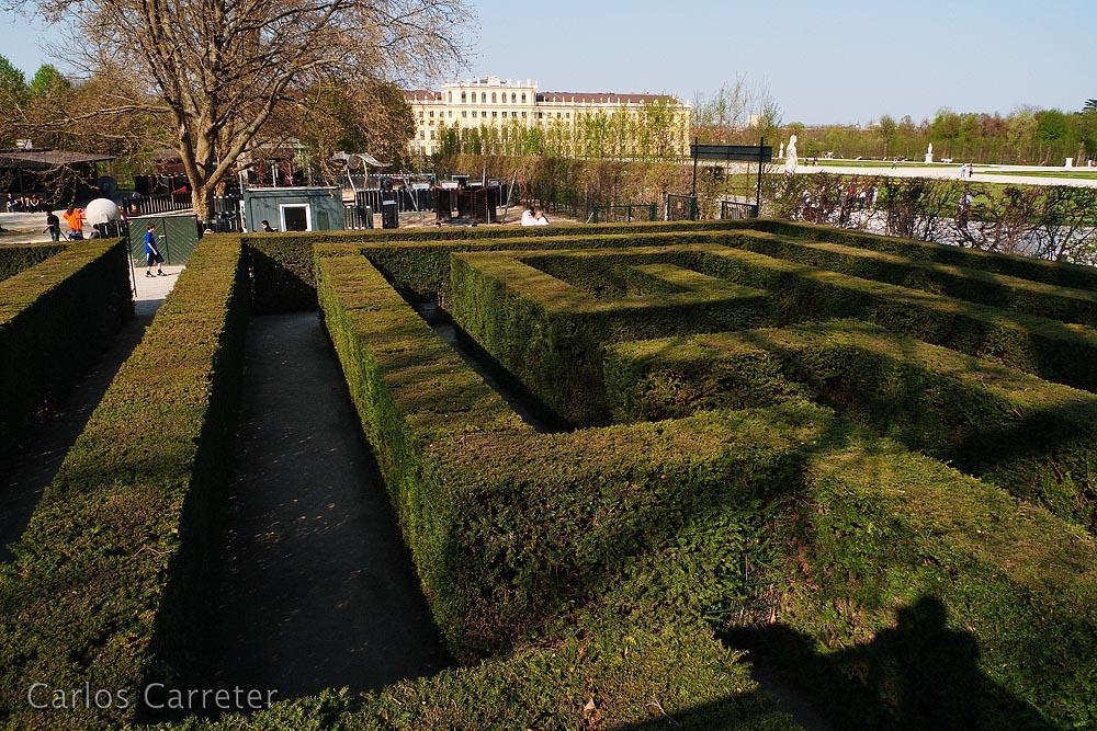 Schönbrunn - Laberinto