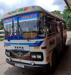 104 - A local bus