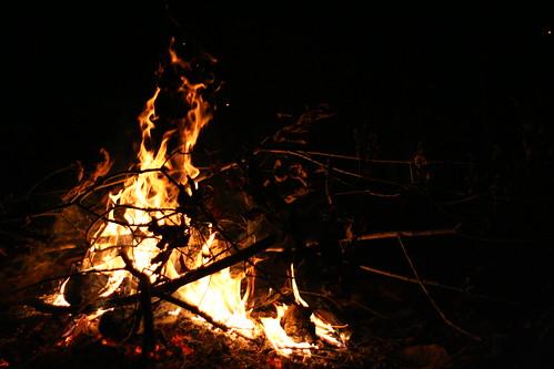 Rough River: Firebugs