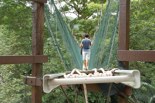 High tech walking planks ... AKA aluminum ladders tied together (Kuala Lumpur, Malaysia)
