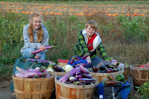 Emily and Daniel Scottgale help with food drive. Click on photo for larger image.