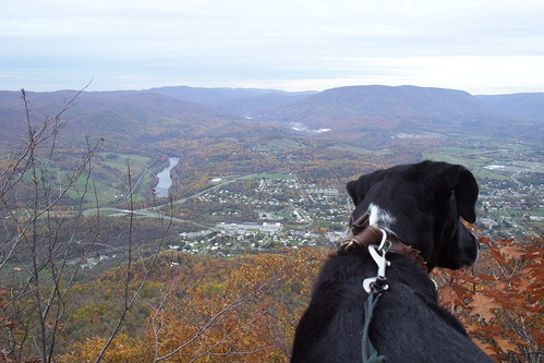 Angel's Rest 2002: Jimmie Admires View