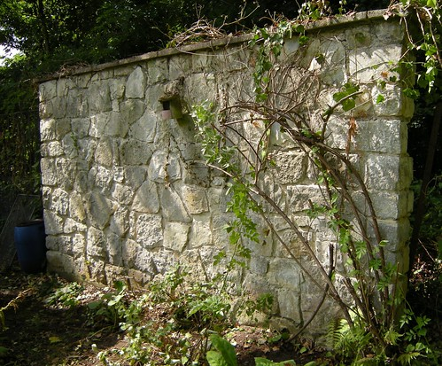 Vom Efeu befreite Mauer