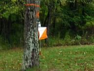 An orienteering control