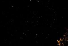 Stars in the dales 2