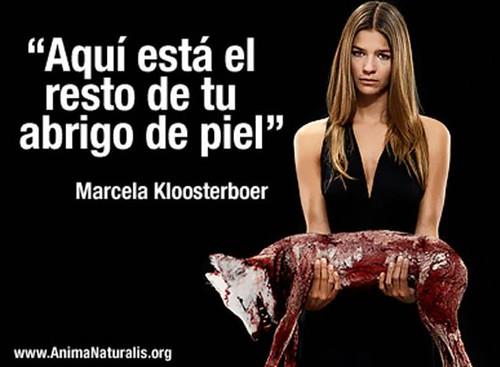 Marcela Kloosterboer, comprometida.Impactante campaña contra el uso de pieles de animales.