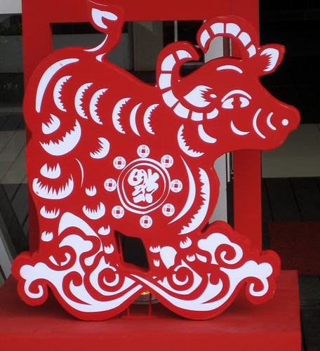 ox cutout