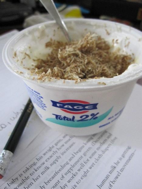 greek_yogurt