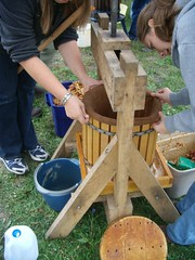 Setting up the cider press