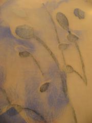 Poppies Triptych I - Mylar rubbings