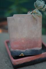 ceramics-97