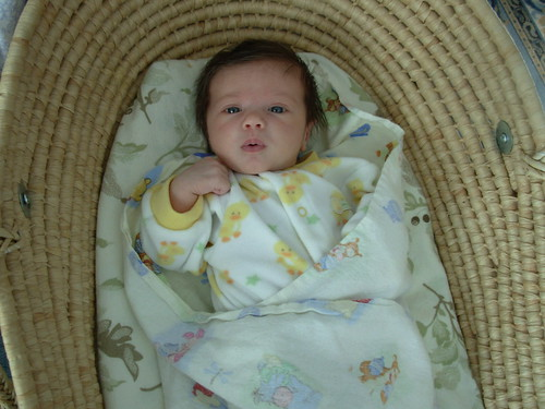 baby feb 2009 016