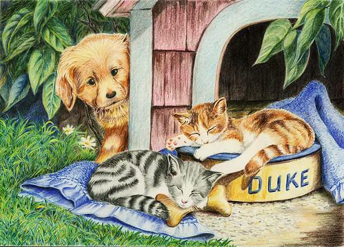 智勝_色鉛筆-狗與貓