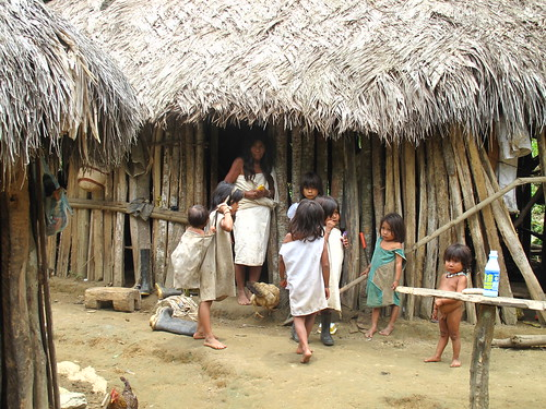 Kogui Indians