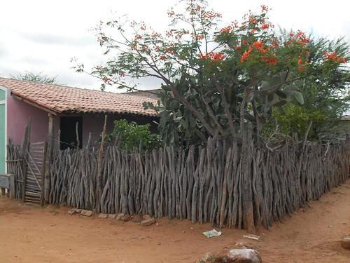 Arquitetura típica