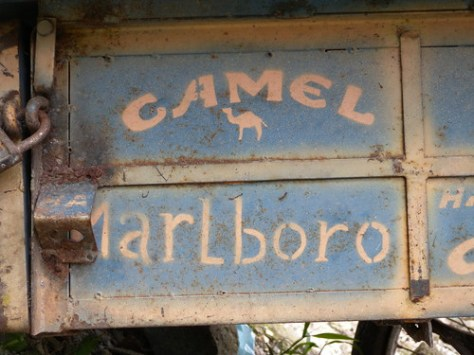 Camel and Marlboro