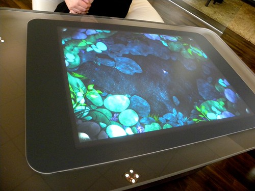 Microsoft Surface with the 'fish pond' screen saver