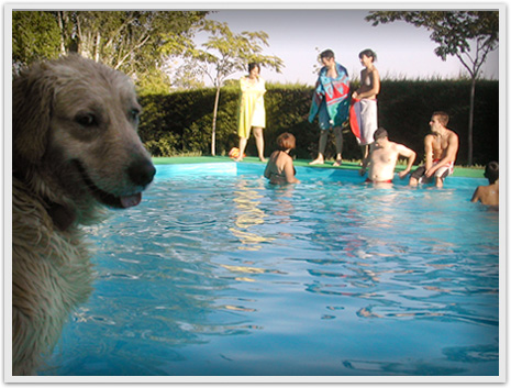 4_verano