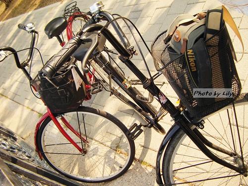 跟劍橋大飯店租借的腳踏車