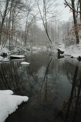 Pohick Creek in March snow
