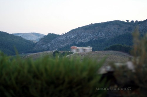 The view of Segesta Greek Ruins from a Wedding in Sicily, Italy