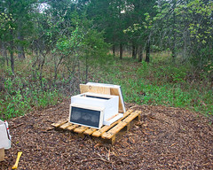 Bee Hive Set-up