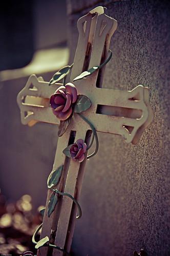 Cross & Roses