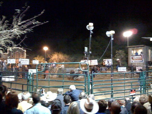 Bull riding in cave creek by gt2697.