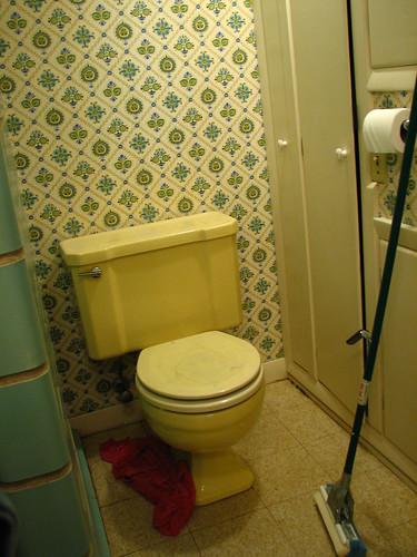 Zee bathroom, before