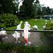 cologne zoo