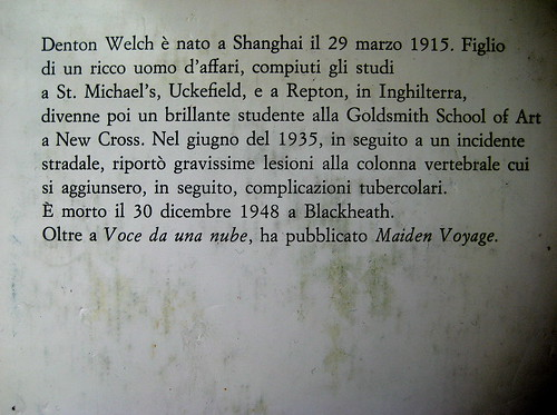 Denton Welch, Voce da una nube, Mondadori 1971, Bruno Binosi: sovracoperta (part. della q. di cop)