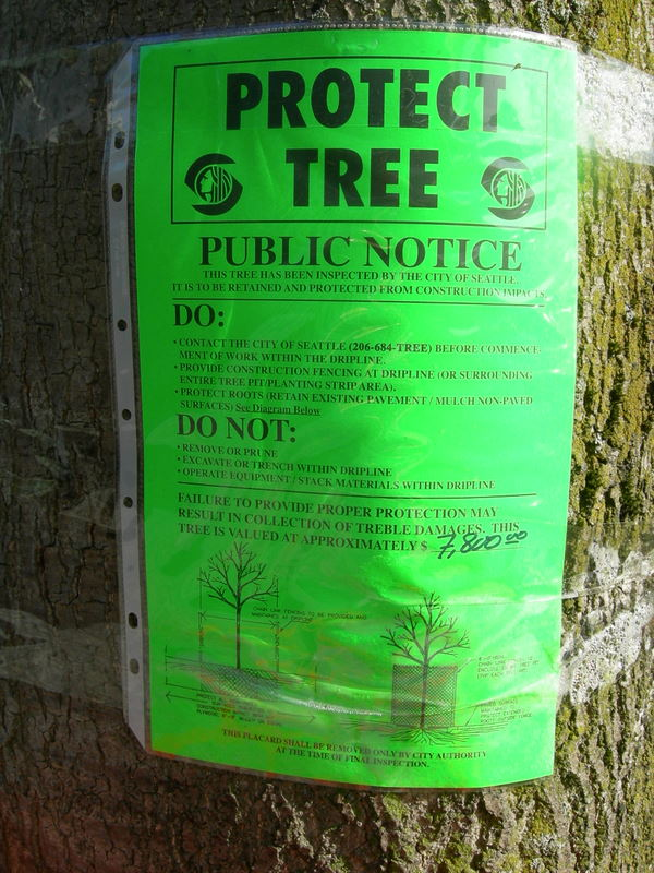 Protect Tree Public Notice