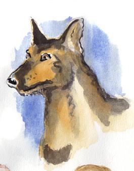 wolfdog#24