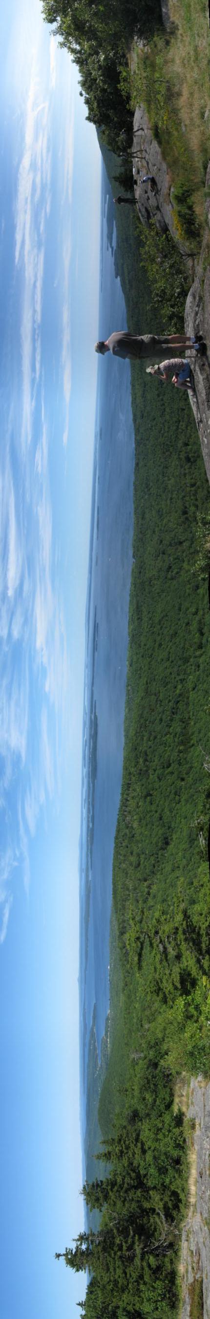 Panorama vert