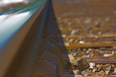 """ Summer on track """