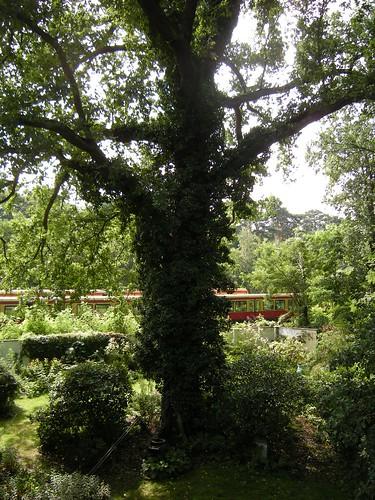 Eichengarten