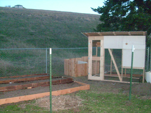 the coop and raised beds