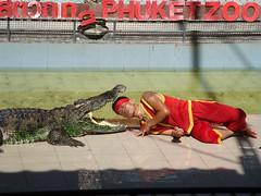 Phuket Zoo 8