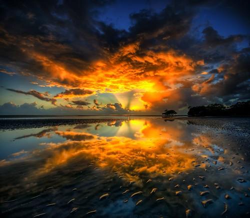 Let there be light por Matt Callow