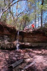 Peachtree Waterfall