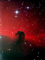 B33 - Horsehead Nebula
