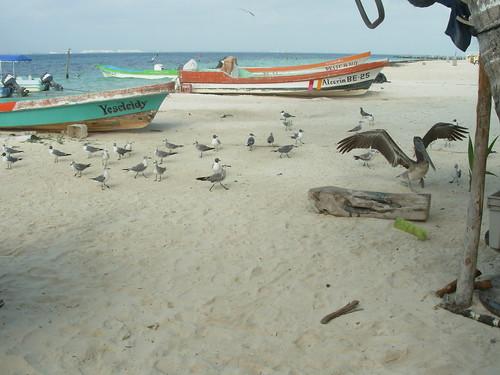 isla mujeres trip 2009 379