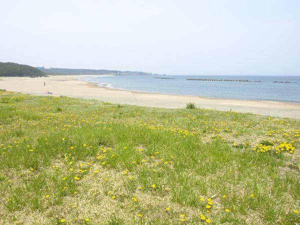 白浜海水浴場 1