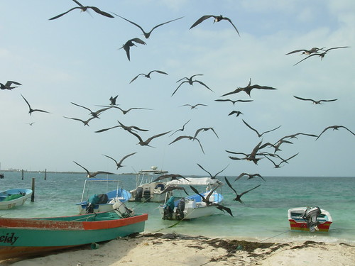 isla mujeres trip 2009 393
