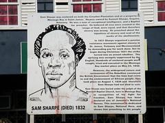 Sam Sharpe Center - DSCN6511
