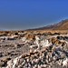 Badwater, California [03] by LMD64
