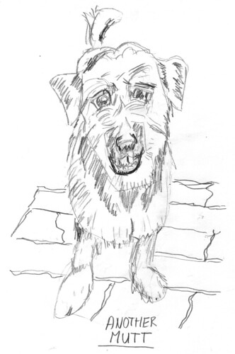 Scruffy dog, part 2