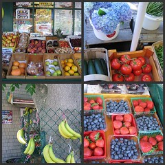 Scenes from Hatchs Produce
